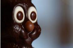 csoki, csokoládé, édesség, húsvét, kakaó, nyúl