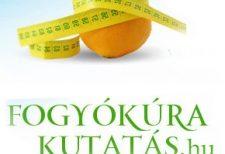 fogyókúra, fogyókúra kutatás, fogyókúrázási szokások, legnépszerűbb fogyókúra