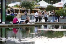 gasztonómia, Gourmet fesztivál, hétvégi programajánló, programajánló