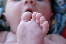 csecsemő, gondoskodás, védelem
