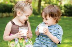 bio, bio életmód, tej