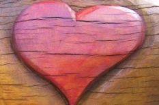 szív, szív-és érrendszeri betegség, szívbetegség