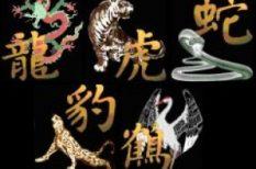 asztrológia, ezotéria, horoszkóp, kína