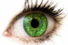 féltékenység, önbizalom, szerelem, szeretet, zöld szemű szörny