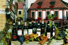 bor, eger, ital, vörösbor