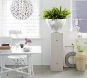 dísz, konyha, levegő, otthon, szépség, virág