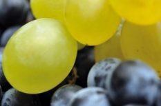 dinnye, recept, szőlő