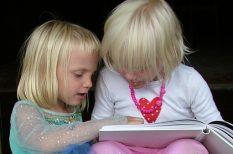 kultúra, olvasás, pláza