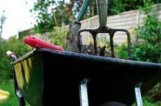 fogyókúra, kert, zöldség