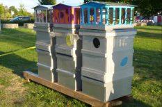 közösség, méz, Városi méhészet
