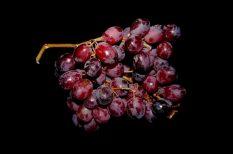 csirkemell, kékszőlő, szőlő