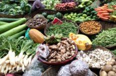 élelmiszer, tápanyag tartalom, termőföld