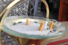 betegség, dohányzás, statisztika