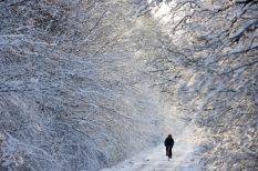 előrejelzés, havazás, időjárás