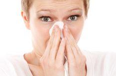 allergia, pályázat, poratka allergia