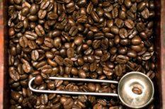 antioxidáns, kávé, zöld kávé