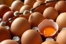 húsvét, tojás, tojásár