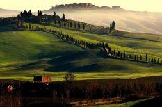 olaszország, turizmus, viselkedés
