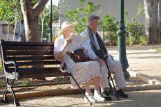 Alzheimer-kór, egészség, kutatás