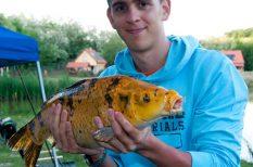 hal, horgászat, sztár