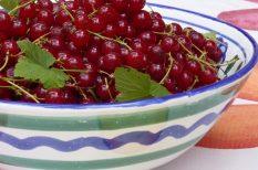 desszert, gyümölcs, krém, nyár, ribizli