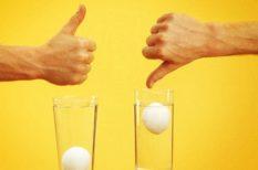 egészséges táplálkozás, friss, házi praktikák, tojás