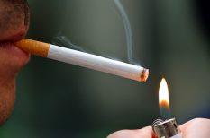 betegség, dohányzás, életmódváltás, felmérés, halálozás