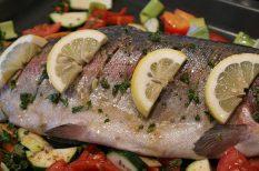 egészség, egészségers életmód, fogyás, hal