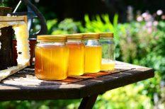 cukorbetegség, cukorpótló, fruktóz, méz