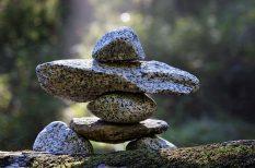 bölcsesség, élet, kapcsolaok, lélek, változás