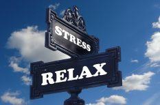 munkahely, stressz, zaklatás