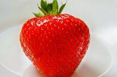 C vitamin, eper, francia kertészek, ókori Róma