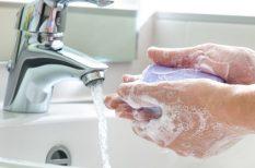 calicivírus, hasmenés, higiénia