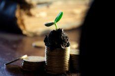 befektetés, nyeremény, pénz