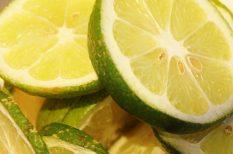 citrom, égés, napfény, növények