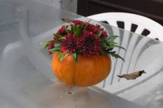 dísz, fantázia, hangulat, kreativitás, ősz, sütőtök, virág