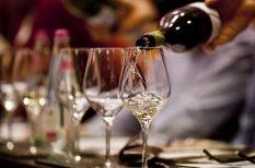 bor, ősz, program, szőlő