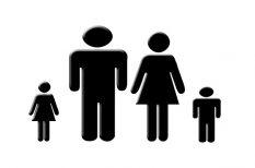 családon belüli erőszak, kényszerláthatás, kutatás, NANE