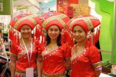 barátság, Chaina Smart Expo, élmény, előadás, élvezet, művészet, szertartás, tea, tradíció