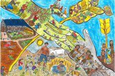 élelmezés, magyar siker, rajzpályázat, verseny