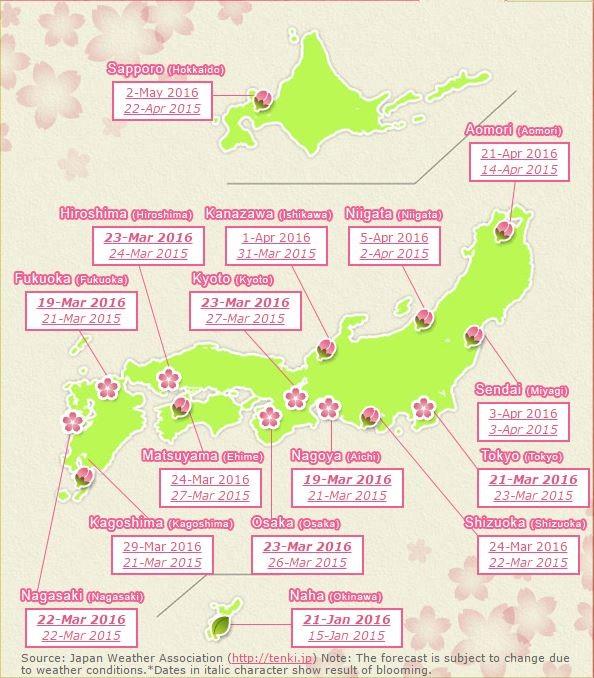 Térképes Sakura-előrejelzés
