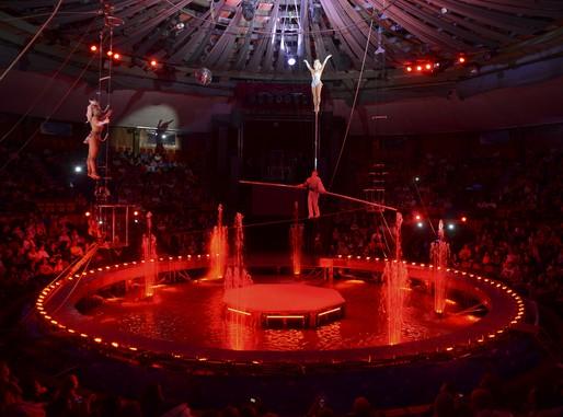 Vízi cirkusz, totál, Kép: Fővárosi Nagycirkusz