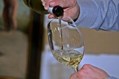 bor, magyarország, névadás, pályázat, szőlő