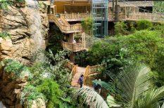 állatkert, Dél-Amerika, húsvét, Nyíregyháza, program