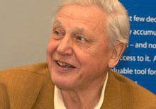 BBC, David Attenborough, madarak, május, sorozat, születésnap, természetfilm