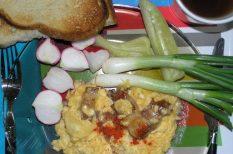pirítós, reggeli, tavaszi zöldségek, tojás