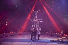 cirkusz, produkció, program, világnap