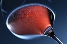 bor, kékoportó, kóstoló, Pécs, portugieser, verseny