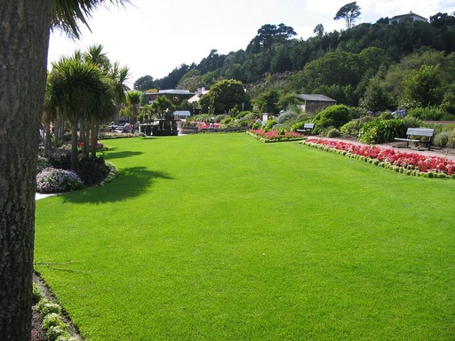 Csodálatos kert, középen szép gyeppel, Kép: publicdomainpictures