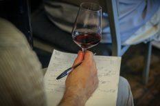 bemutató, bor, Bujdosó, rozé, újdonság